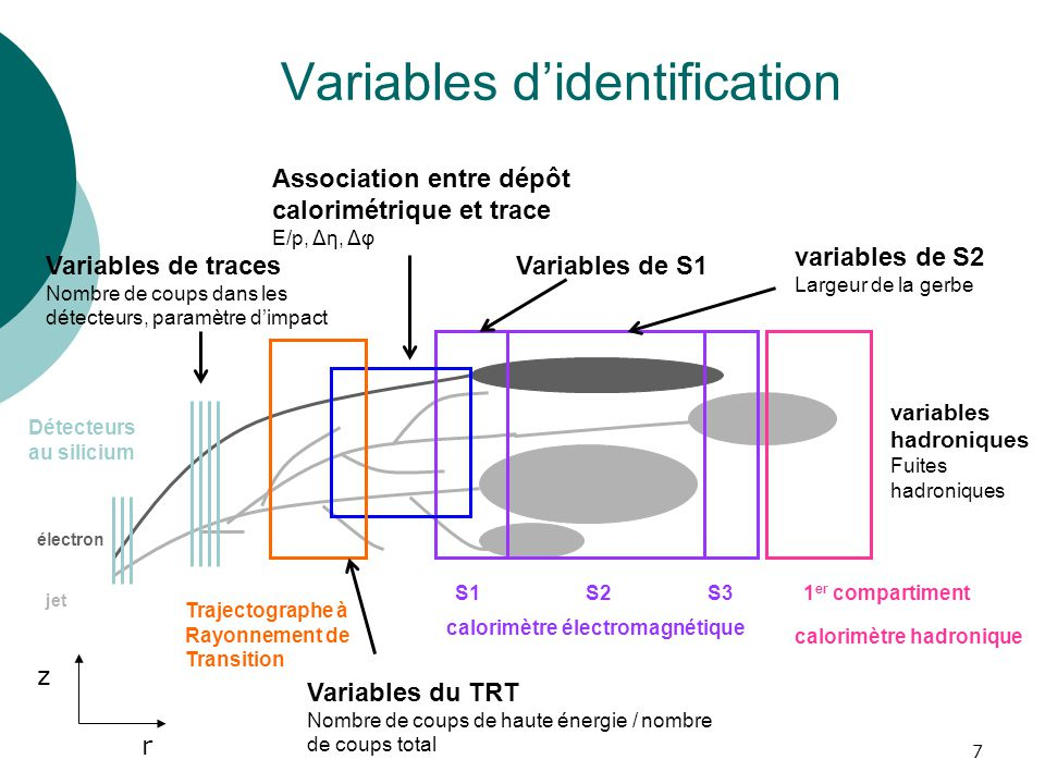 Variables d'identification
