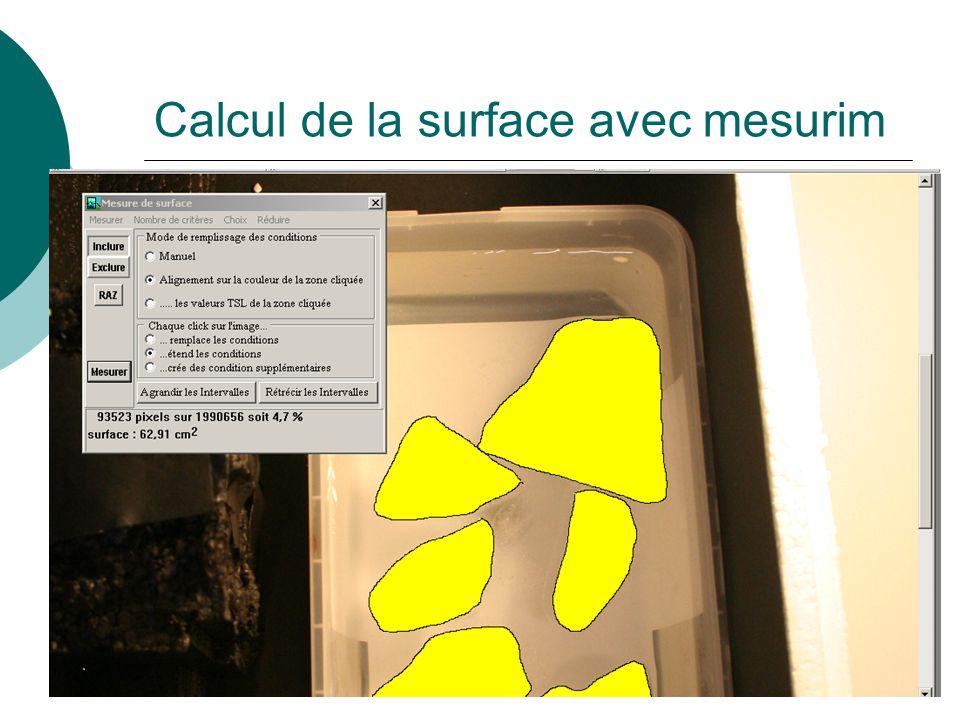 Calcul de la surface avec mesurim