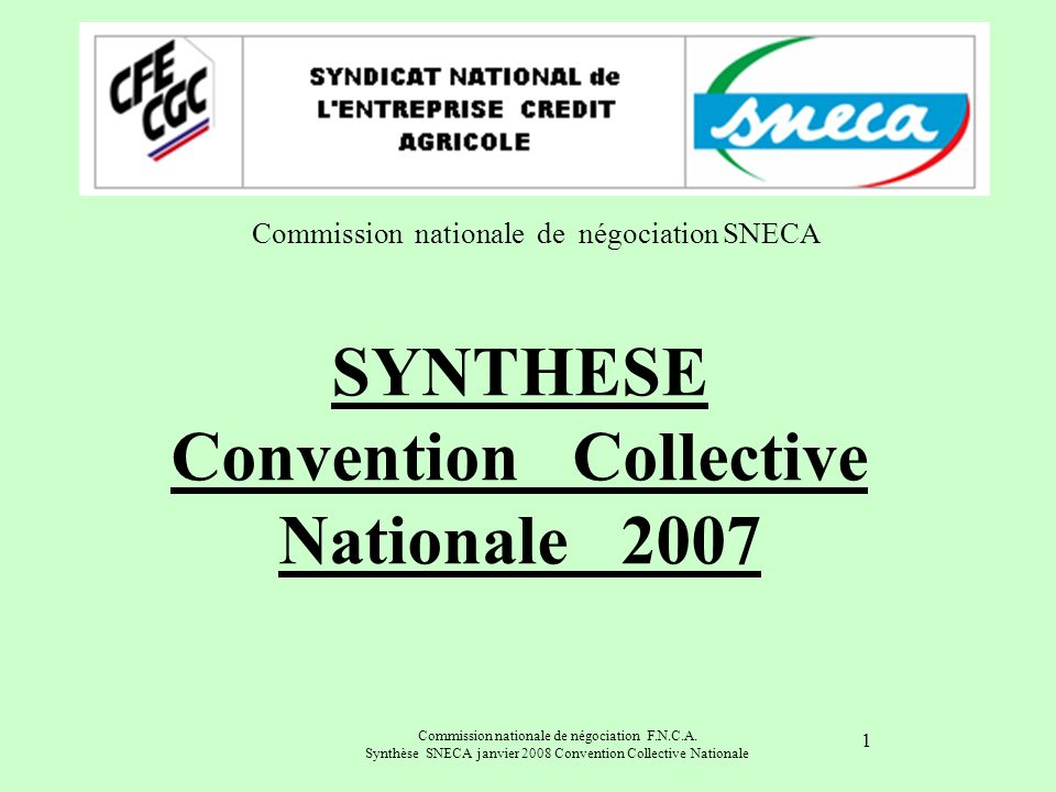 SYNTHESE Convention Collective Nationale 2007