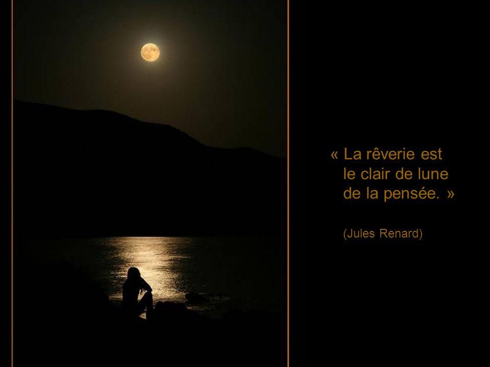« La rêverie est le clair de lune de la pensée. » (Jules Renard)
