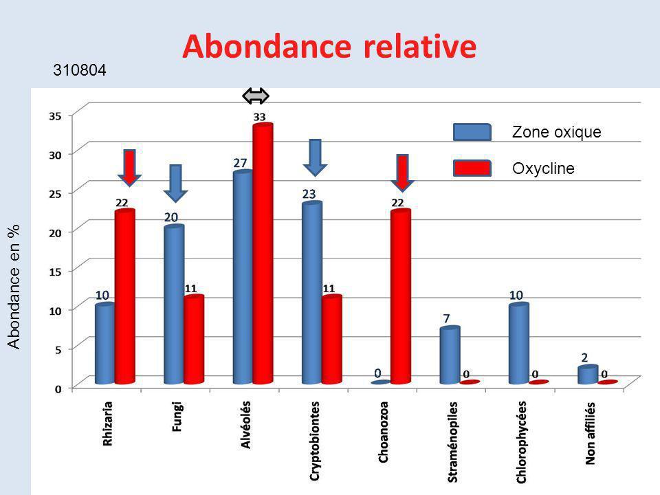 Abondance relative 310804 Zone oxique Oxycline Abondance en %