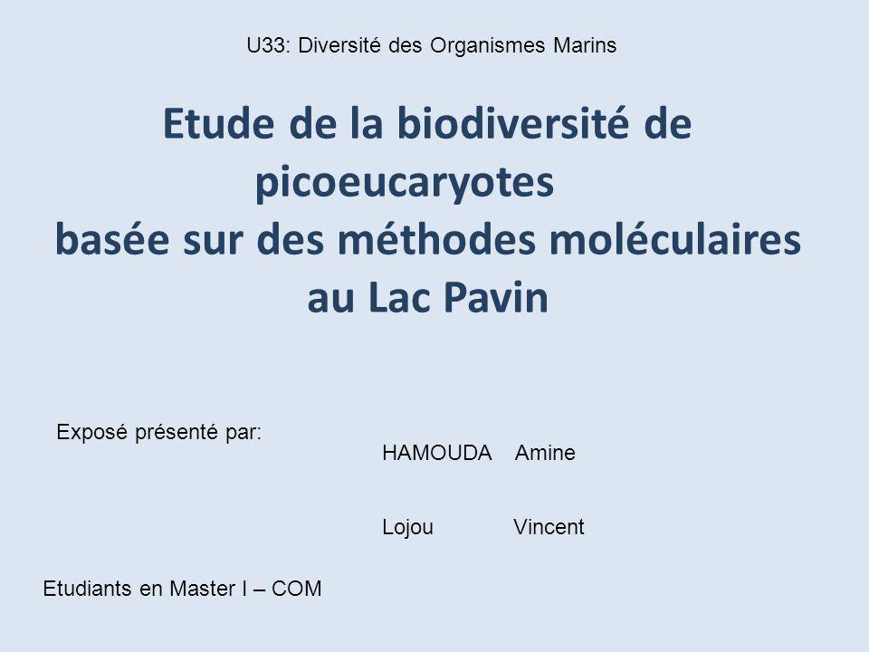 U33: Diversité des Organismes Marins