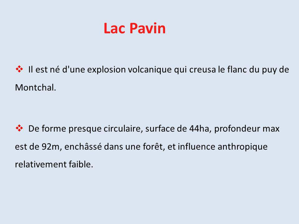 Lac Pavin Il est né d une explosion volcanique qui creusa le flanc du puy de Montchal.