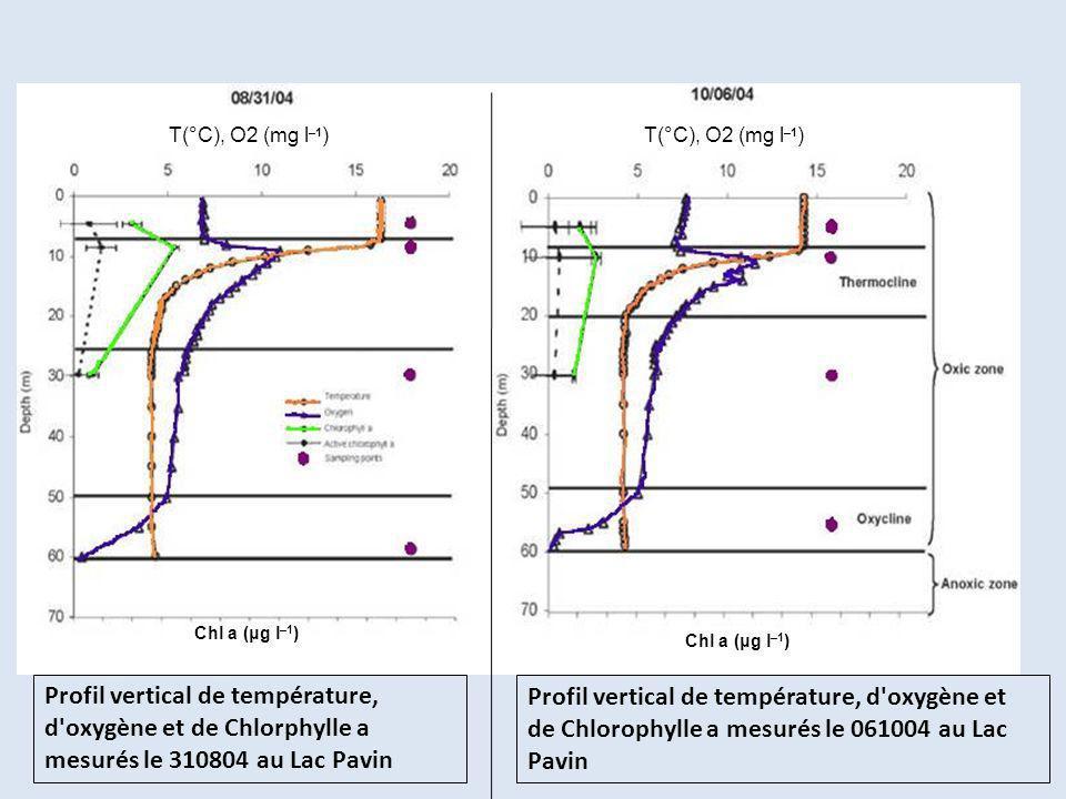 T(°C), O2 (mg l–1) T(°C), O2 (mg l–1) Chl a (μg l–1) Chl a (μg l–1)