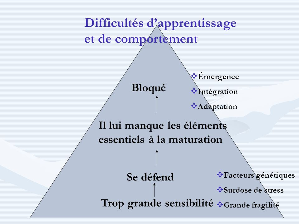 Difficultés d'apprentissage et de comportement