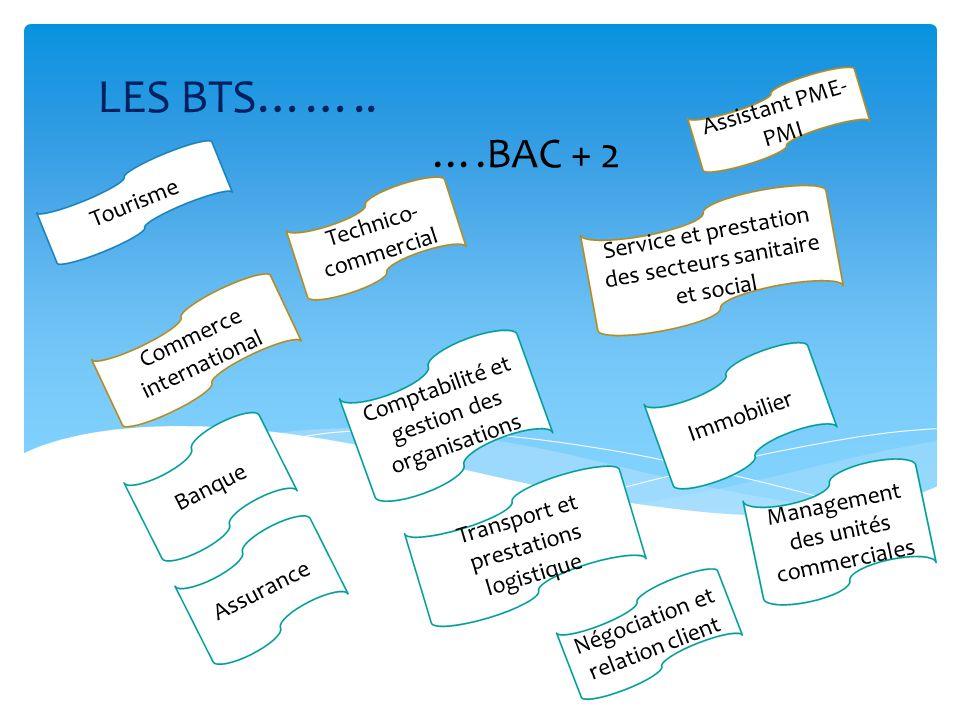 LES BTS…….. ….BAC + 2 Assistant PME-PMI Tourisme Technico-commercial