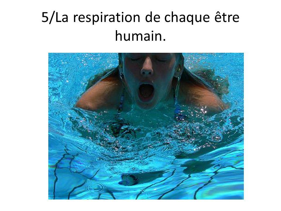 5/La respiration de chaque être humain.