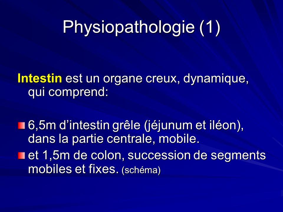 Physiopathologie (1) Intestin est un organe creux, dynamique, qui comprend: