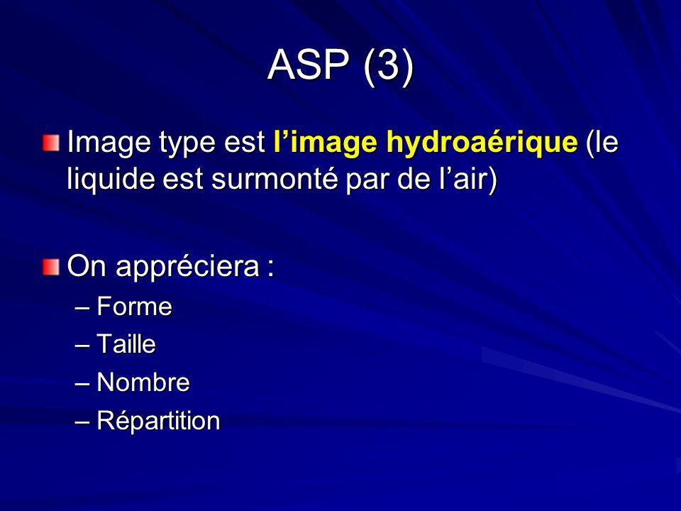 ASP (3) Image type est l'image hydroaérique (le liquide est surmonté par de l'air) On appréciera :