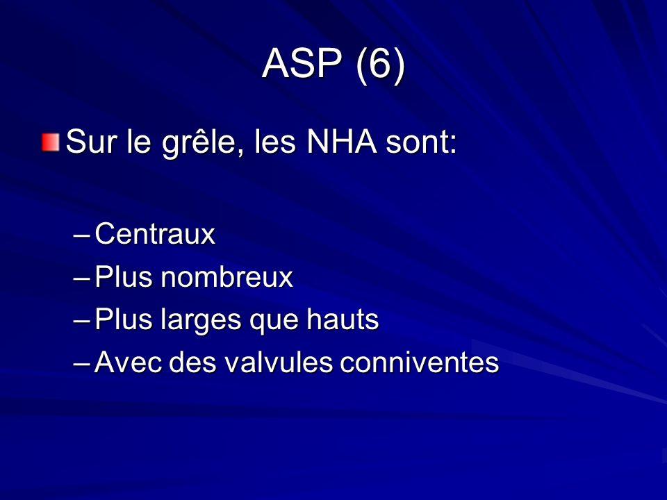 ASP (6) Sur le grêle, les NHA sont: Centraux Plus nombreux