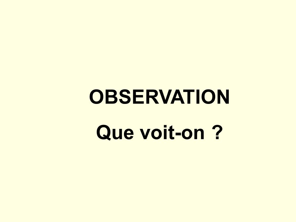 OBSERVATION Que voit-on