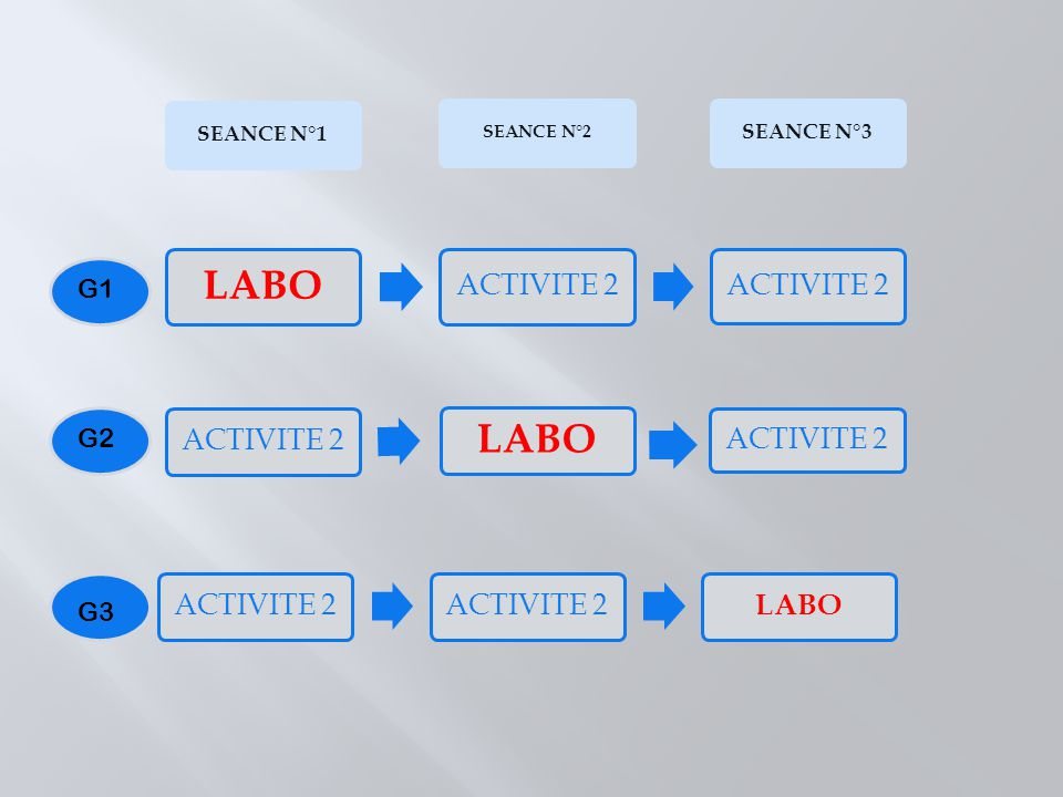 LABO LABO ACTIVITE 2 ACTIVITE 2 ACTIVITE 2 LABO G1 G2 G3 SEANCE N°1