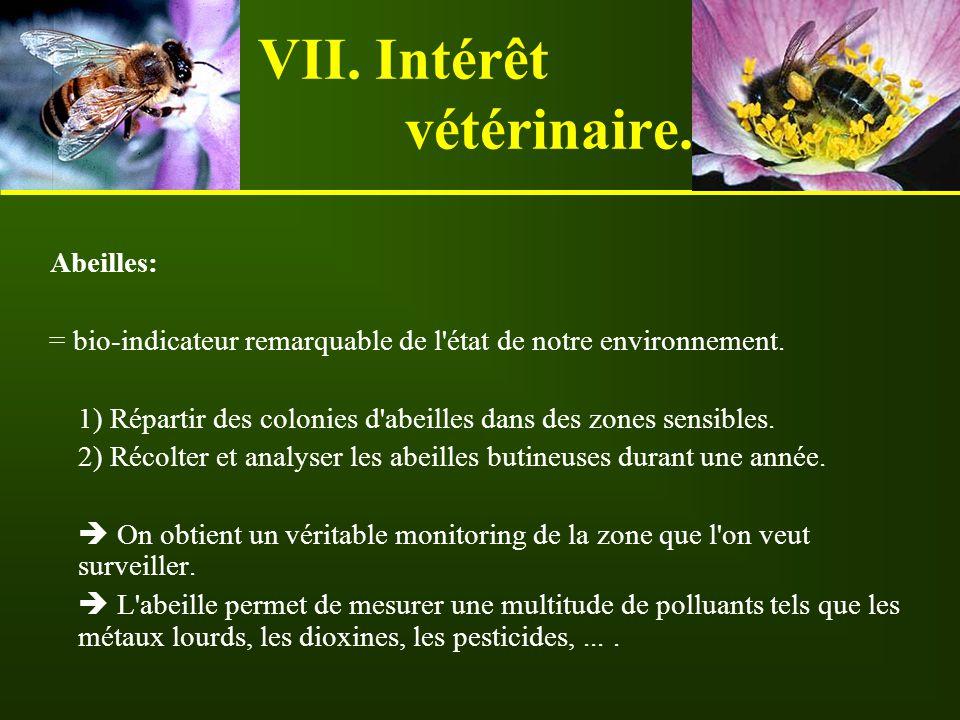 VII. Intérêt vétérinaire.