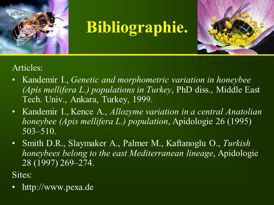 Bibliographie. Articles: