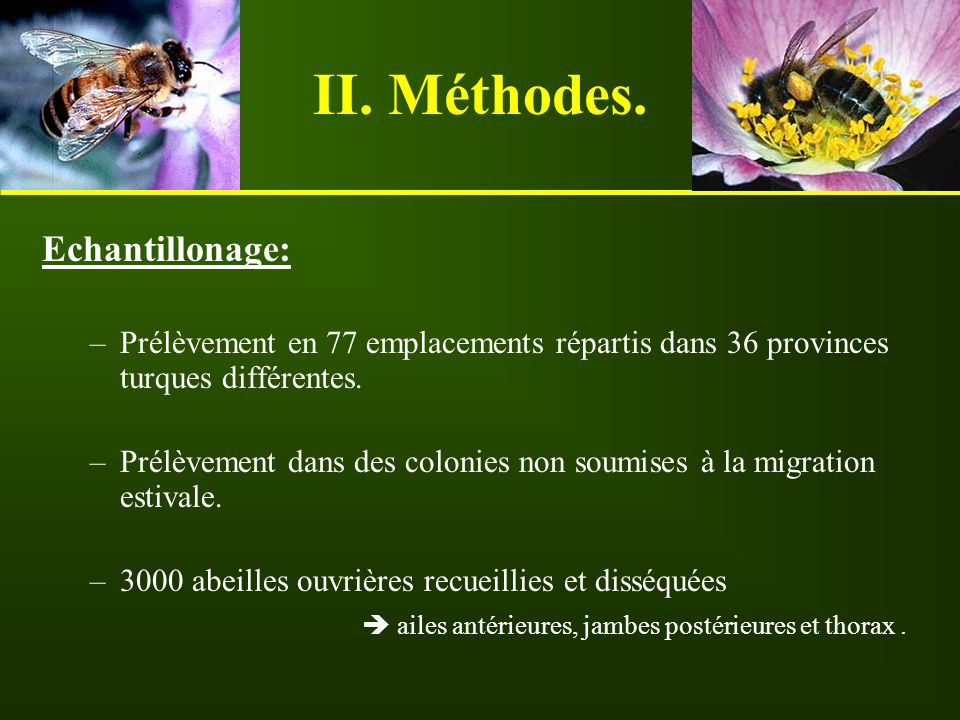 II. Méthodes. Echantillonage: