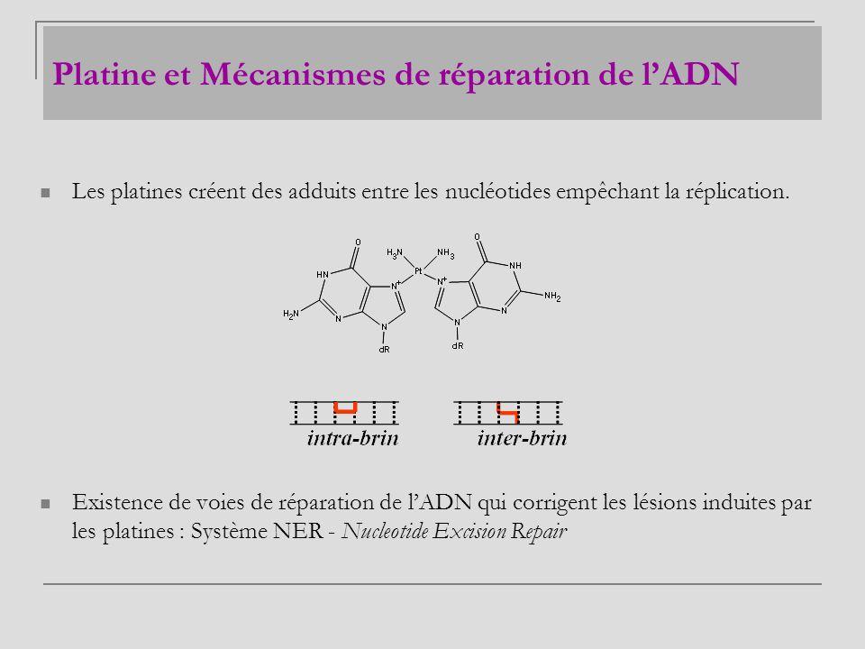 Platine et Mécanismes de réparation de l'ADN