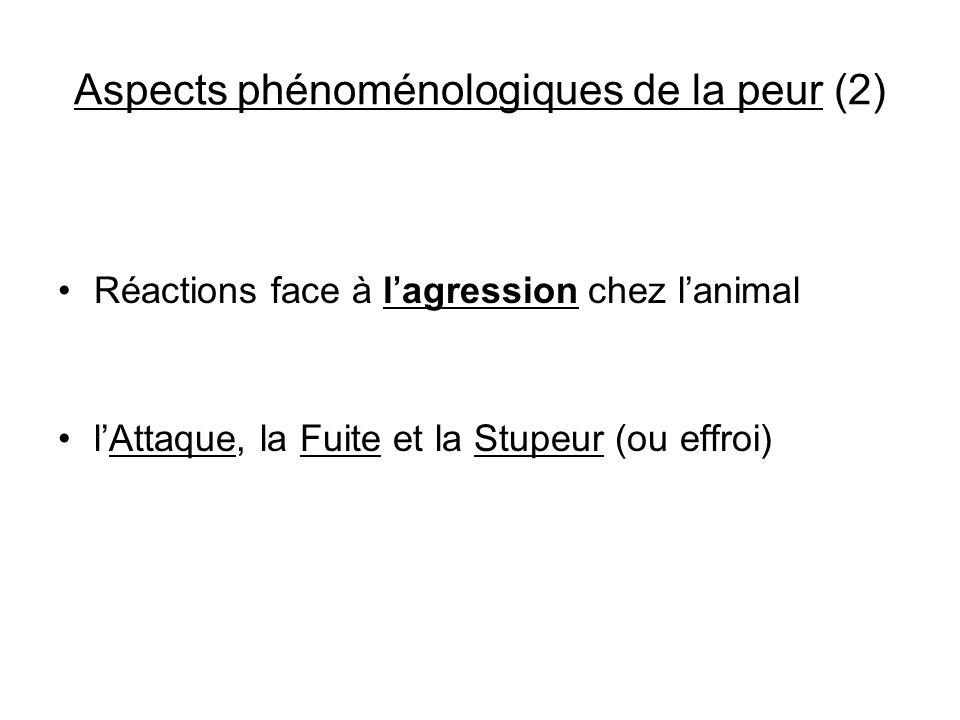 Aspects phénoménologiques de la peur (2)