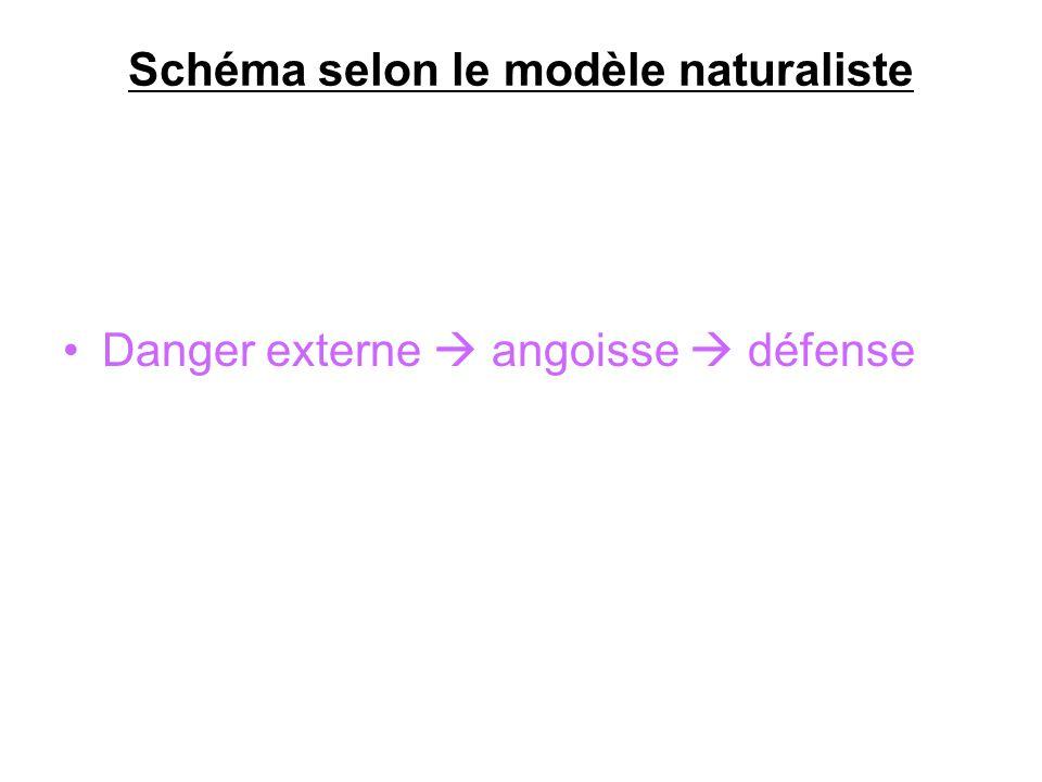 Schéma selon le modèle naturaliste