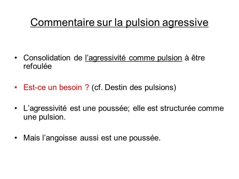 Commentaire sur la pulsion agressive