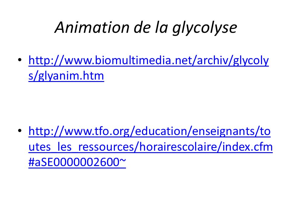 Animation de la glycolyse