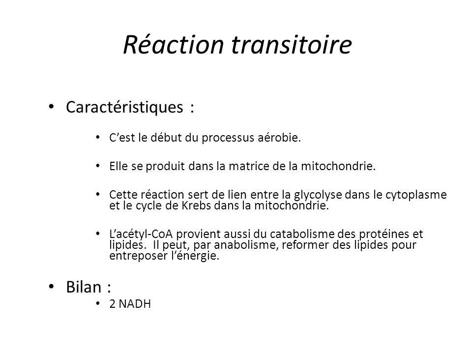 Réaction transitoire Caractéristiques : Bilan :