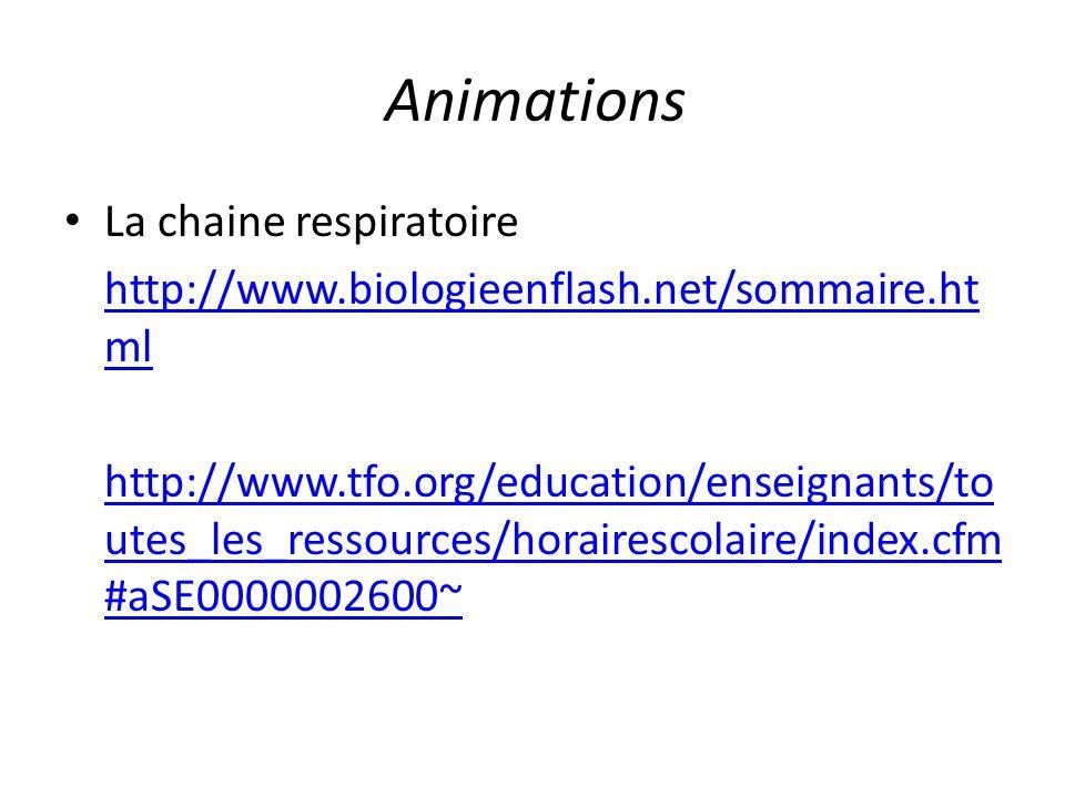 Animations La chaine respiratoire