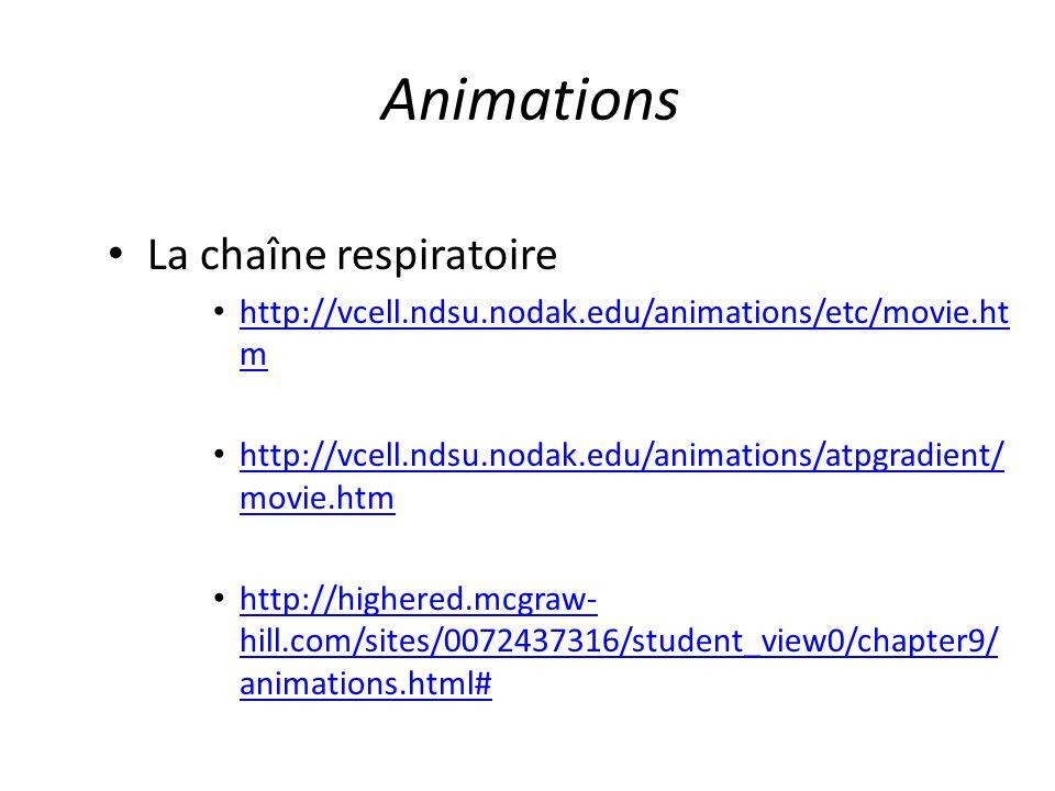 Animations La chaîne respiratoire