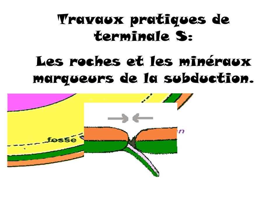 Travaux pratiques de terminale S: