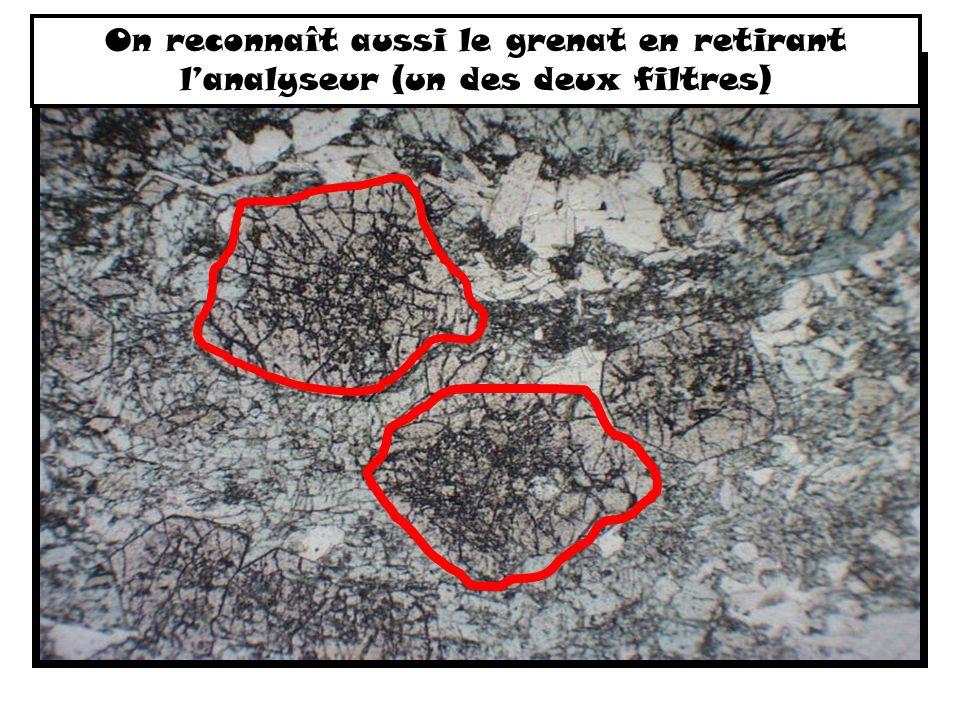 On reconnaît aussi le grenat en retirant l'analyseur (un des deux filtres)