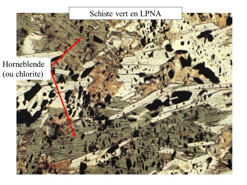 Schiste vert en LPNA Horneblende (ou chlorite)