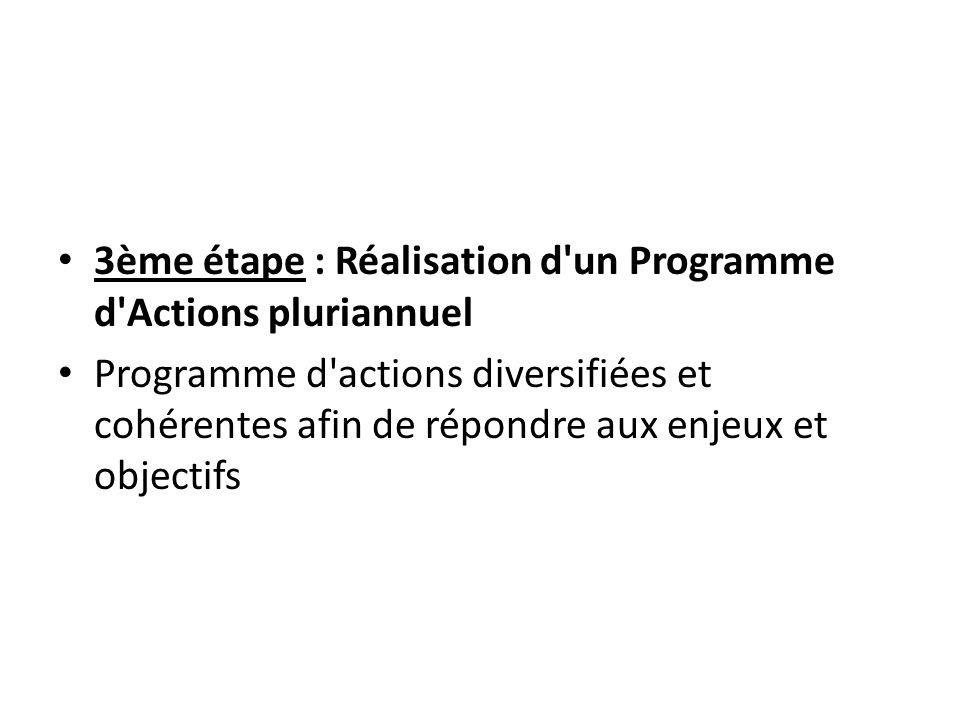 3ème étape : Réalisation d un Programme d Actions pluriannuel