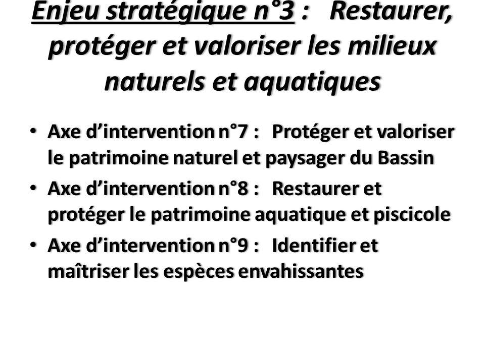 Enjeu stratégique n°3 : Restaurer, protéger et valoriser les milieux naturels et aquatiques