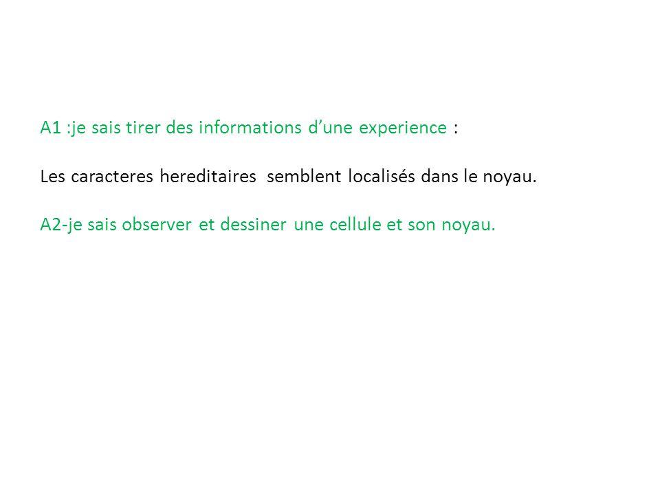 A1 :je sais tirer des informations d'une experience :