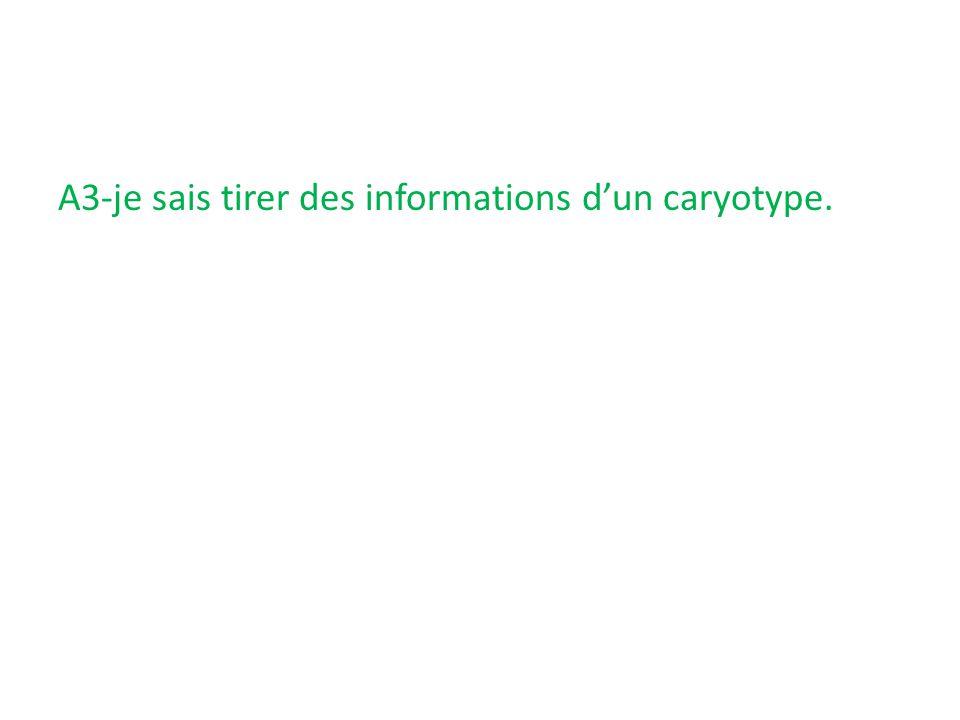 A3-je sais tirer des informations d'un caryotype.