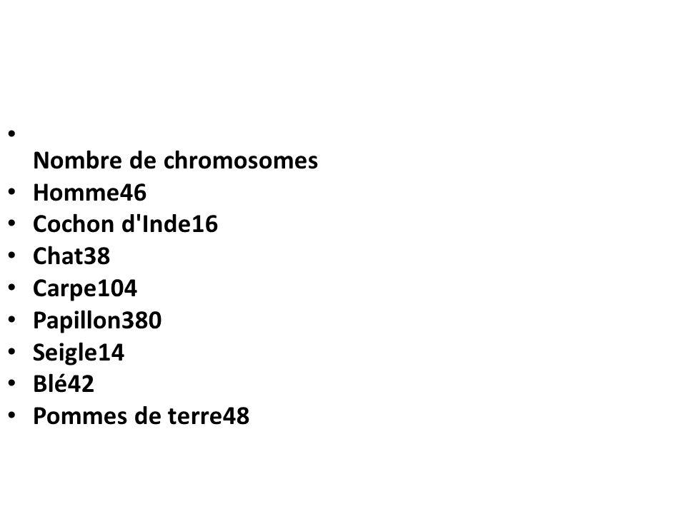 Nombre de chromosomes Homme46. Cochon d Inde16. Chat38. Carpe104. Papillon380. Seigle14. Blé42.