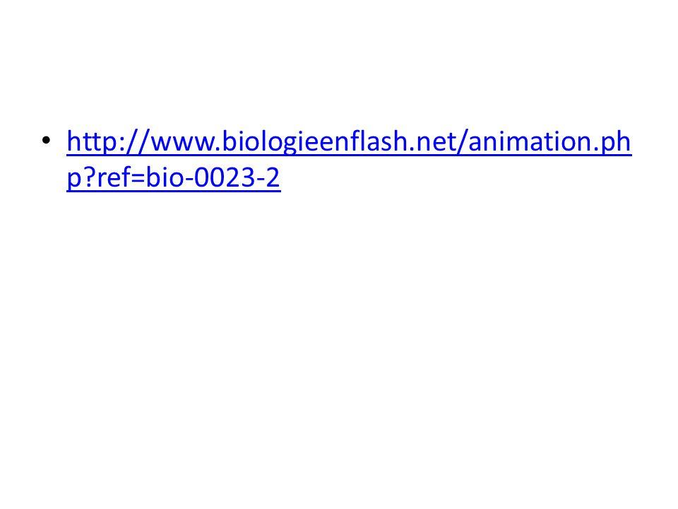 http://www.biologieenflash.net/animation.php ref=bio-0023-2