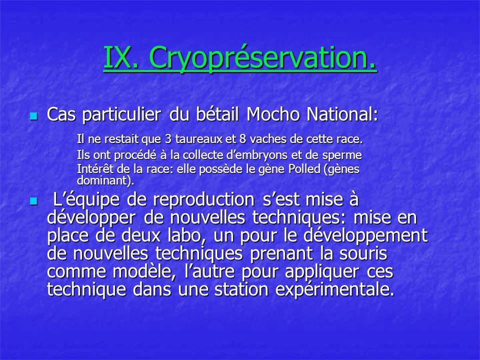 IX. Cryopréservation. Cas particulier du bétail Mocho National: