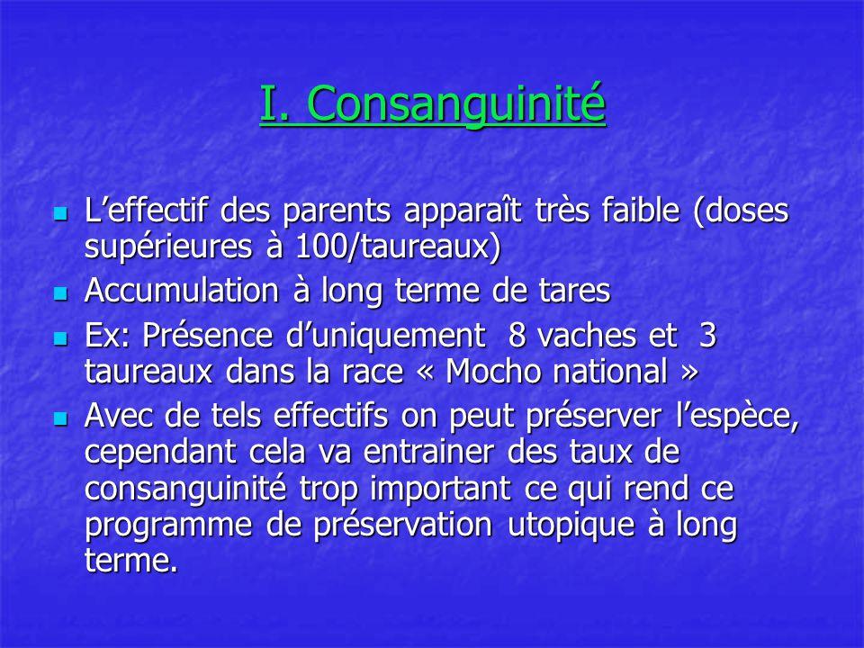 I. Consanguinité L'effectif des parents apparaît très faible (doses supérieures à 100/taureaux) Accumulation à long terme de tares.