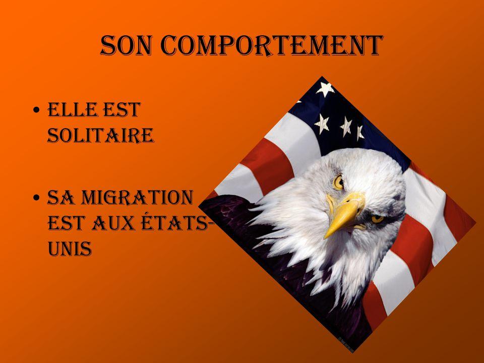 Son comportement Elle est solitaire Sa migration est aux états- unis