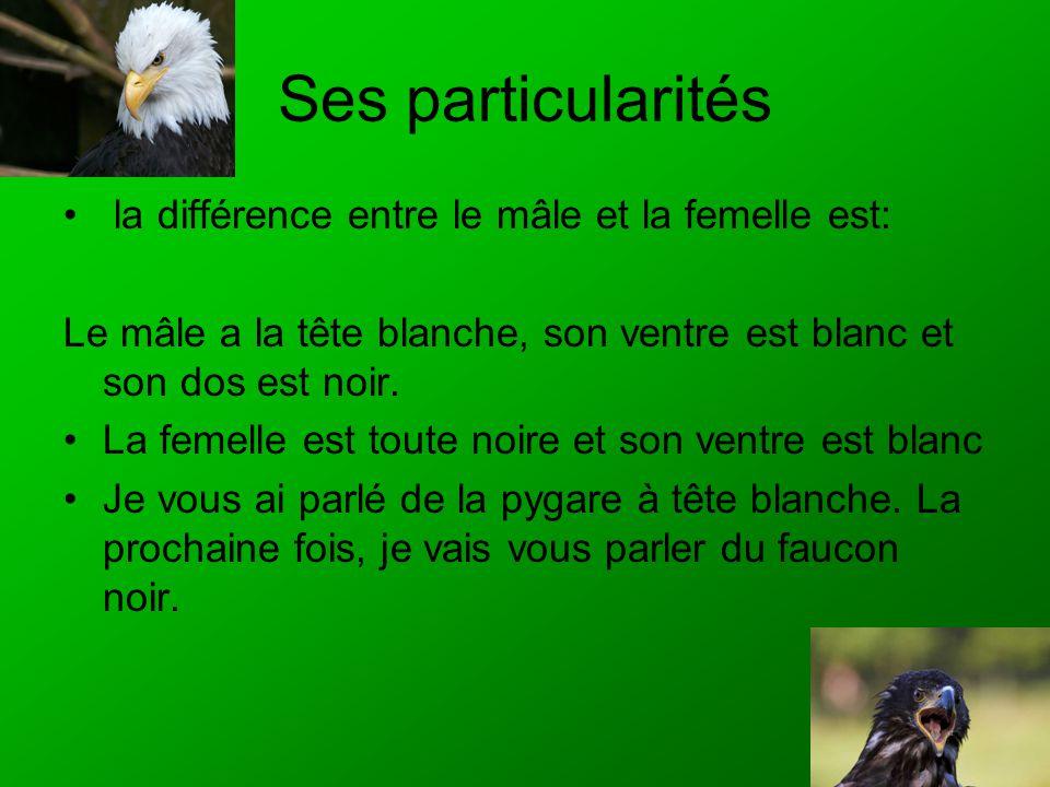 Ses particularités la différence entre le mâle et la femelle est: