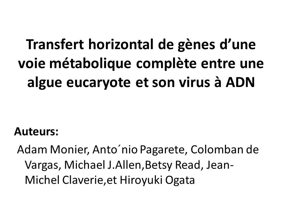 Transfert horizontal de gènes d'une voie métabolique complète entre une algue eucaryote et son virus à ADN