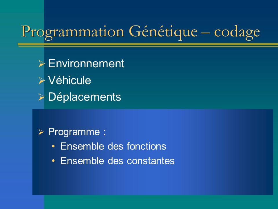Programmation Génétique – codage