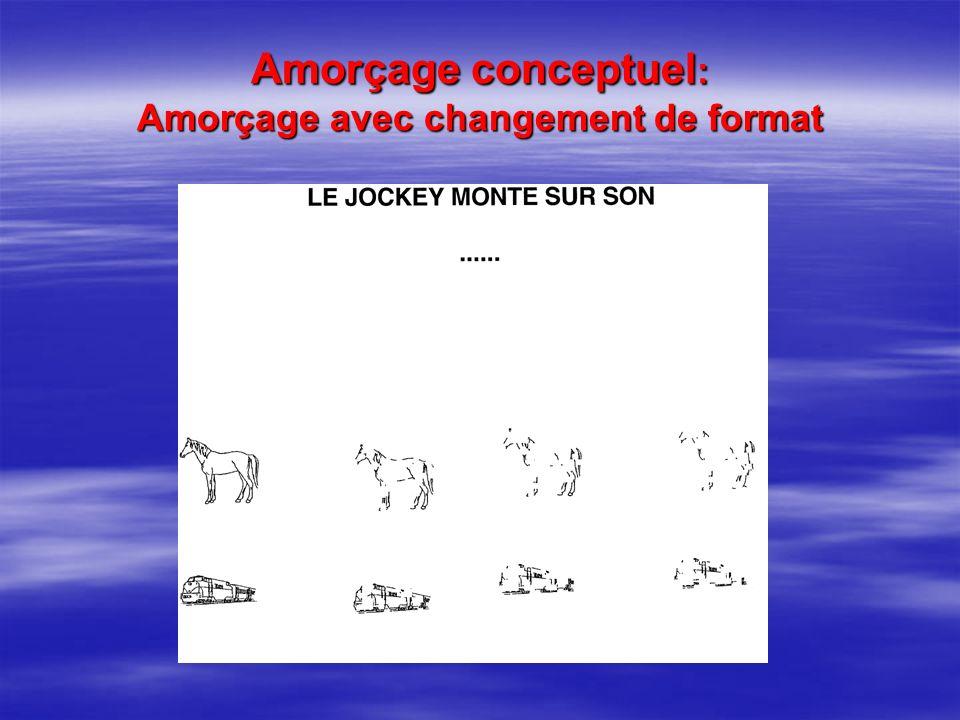 Amorçage conceptuel: Amorçage avec changement de format