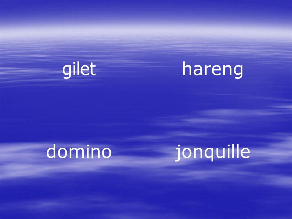 gilet hareng domino jonquille
