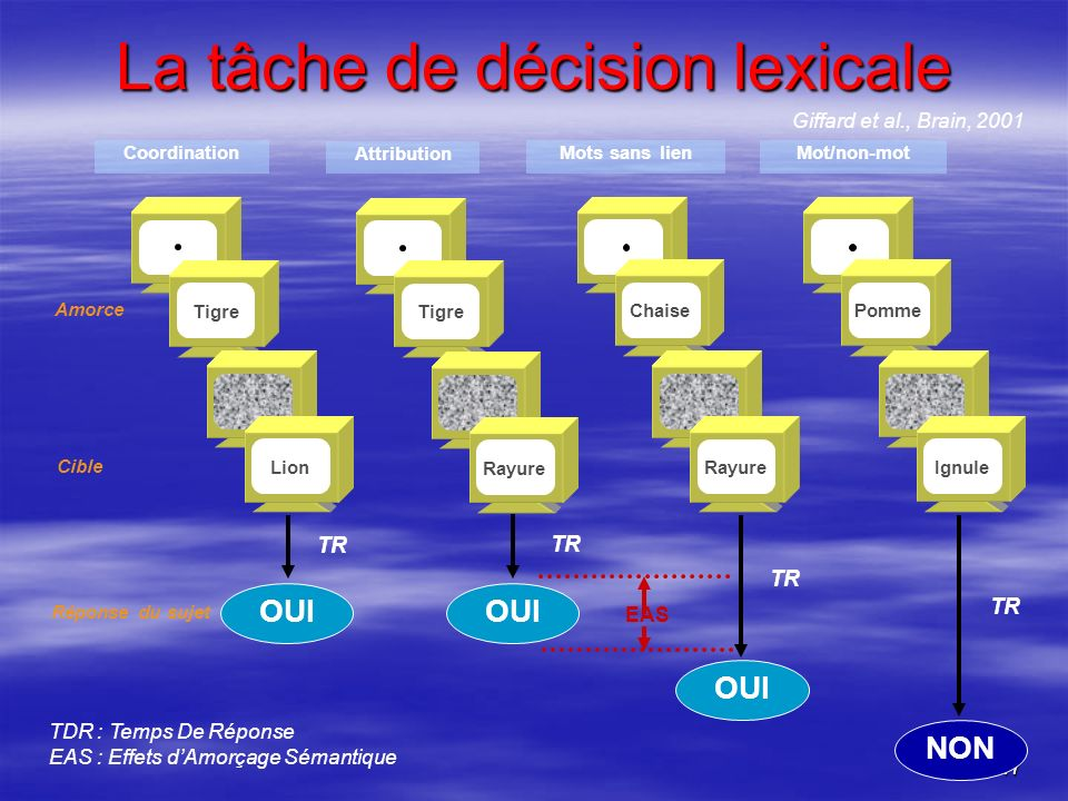 La tâche de décision lexicale