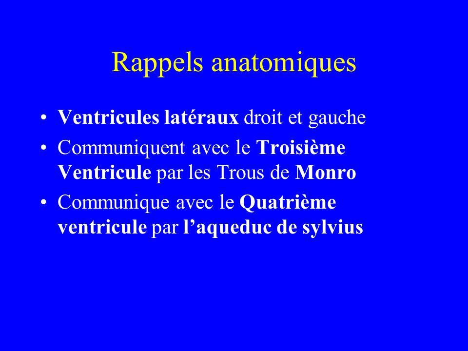 Rappels anatomiques Ventricules latéraux droit et gauche