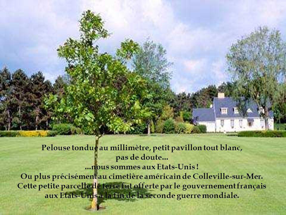 Ou plus précisément au cimetière américain de Colleville-sur-Mer.