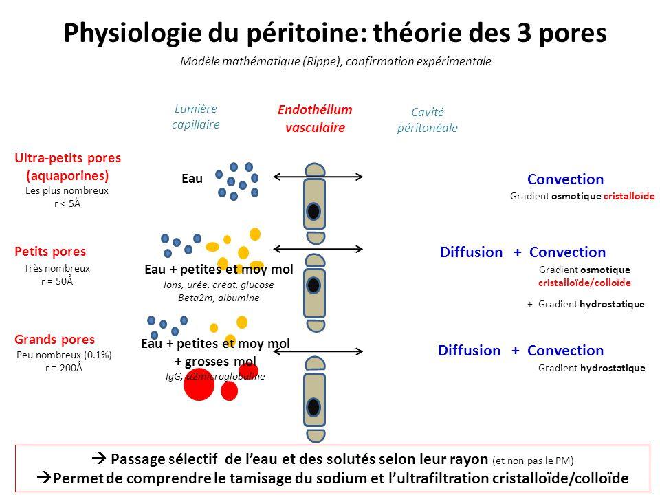 Physiologie du péritoine: théorie des 3 pores