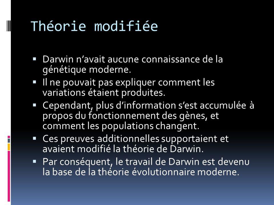 Théorie modifiée Darwin n'avait aucune connaissance de la génétique moderne. Il ne pouvait pas expliquer comment les variations étaient produites.