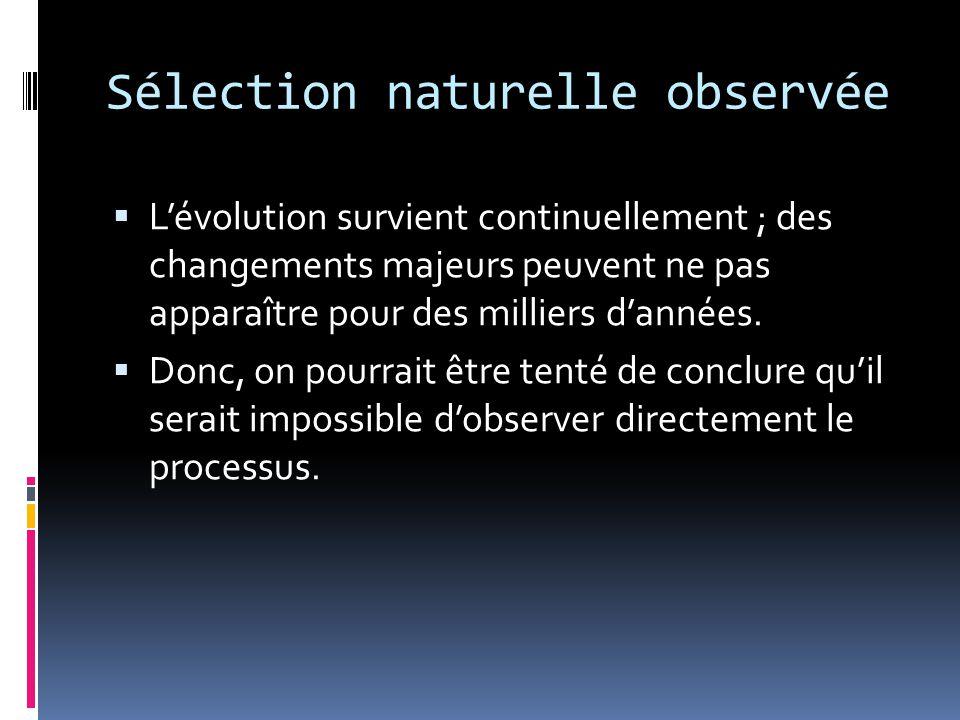 Sélection naturelle observée